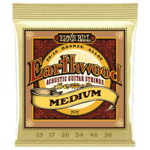 Ernie Ball 2002 Earthwood 80/20 Bronze Acoustic Medium 13-56