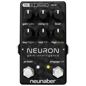 Neunaber Neuron – Gain Intelligence