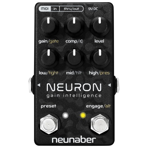 Neunaber Neuron - Gain Intelligence